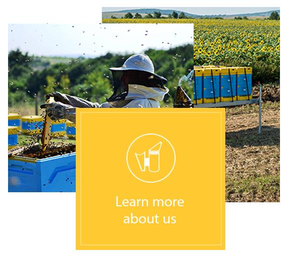 home-beekeeping-base