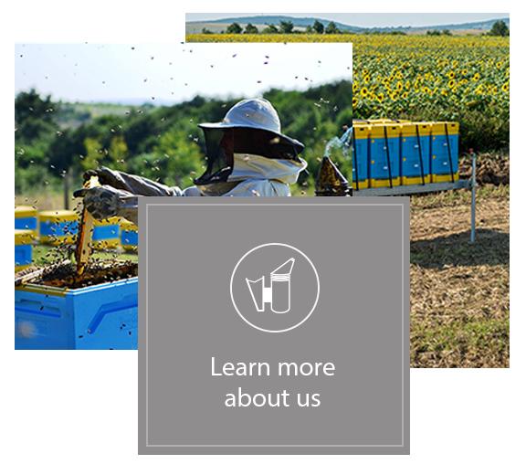 home-beekeeping-over